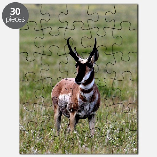 Pronghorn by in Meadow Puzzle
