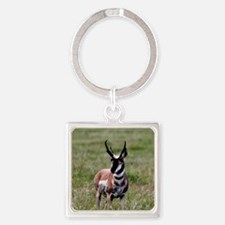 Pronghorn by in Meadow Square Keychain