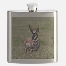Pronghorn by in Meadow Flask