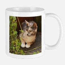 The Element of Surprise Mugs