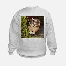 The Element of Surprise Sweatshirt
