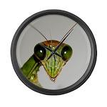 Preying Mantis Eyes Large Wall Clock