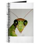 Preying Mantis Eyes Journal