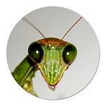Preying Mantis Eyes Round Car Magnet