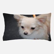 Cute Chihuahua Pillow Case