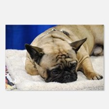 Sleeping French Bulldog Postcards (Package of 8)