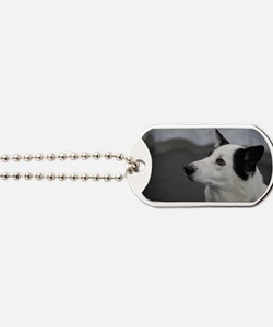 Black and White Canaan Dog Dog Tags