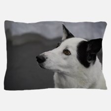 Black and White Canaan Dog Pillow Case