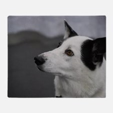 Black and White Canaan Dog Throw Blanket