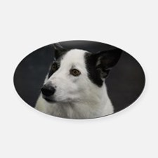Adorable White and Black Canaan Do Oval Car Magnet