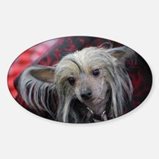 Grey Chinese Crested Decal