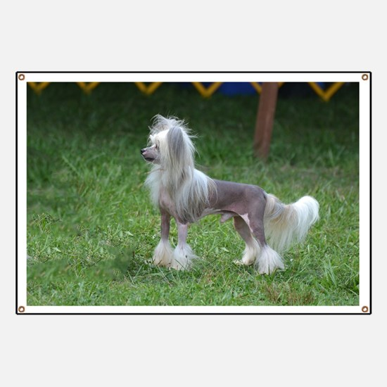 Small Chinese Crested Dog Banner