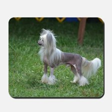 Small Chinese Crested Dog Mousepad