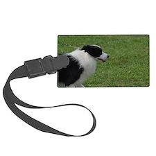 Pet Border Collie Luggage Tag