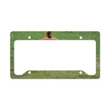Dachshund License Plate Holder