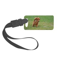 Dachshund Puppy Luggage Tag