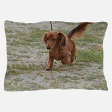 Cute Dachshund Pillow Case