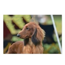 Dachshund Profile Postcards (Package of 8)