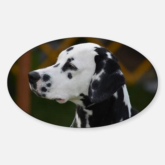 Sweet Dalmatian Sticker (Oval)