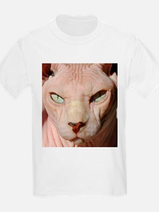 sphynx_eyes.jpg T-Shirt
