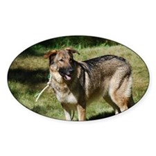 Cute German Shepherd Decal