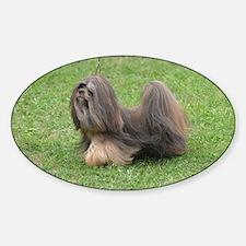 Cute Groomed Havanese Dog Sticker (Oval)