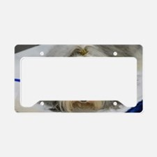 Pet Havanese Dog License Plate Holder