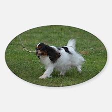 Japanese Chin Dog Decal