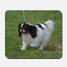 Japanese Spaniel Dog Mousepad