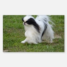 Japanese Chin Puppy Decal