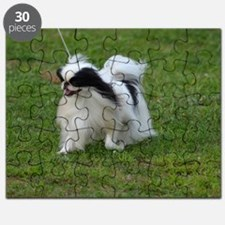 Smug Mug of a Japanese Chin Puzzle