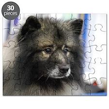 Keeshond Puzzle