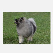 Adorable Keeshond Postcards (Package of 8)