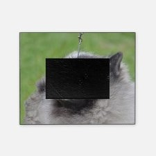 Fluffy Keeshond Picture Frame