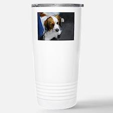 Kooikerhondje Dog Travel Mug