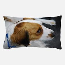 Brown and White Kooikerhondje Pillow Case