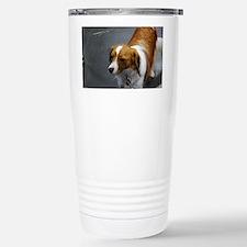 Adorable Kooikerhondje  Stainless Steel Travel Mug