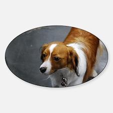 Adorable Kooikerhondje Dog Sticker (Oval)