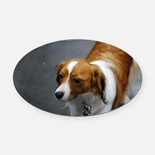 Adorable Kooikerhondje Dog Oval Car Magnet