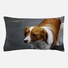 Adorable Kooikerhondje Dog Pillow Case