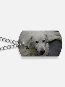 Kuvasz Dog Dog Tags