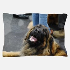 Leonberger Dog Pillow Case