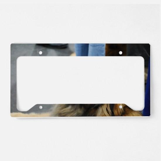 Leonberger Dog License Plate Holder