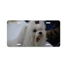 Small White Dog Aluminum License Plate
