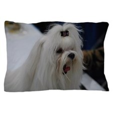 Small White Dog Pillow Case
