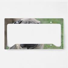 Cute English Mastiff Dog License Plate Holder