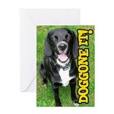 Belated Birthday Doggone It! Dog Greeting Card