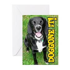 Belated Birthday Doggone Greeting Cards (Pk Of 10)