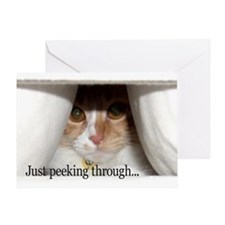 Peeking Kitty Miss You Greeting Card