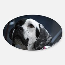 Adorable Pointer Dog Sticker (Oval)